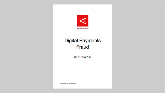 Digital Payments Fraud