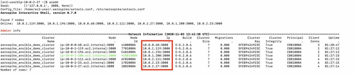 Aerospike admin tool - IP addresses of nodes highlighted